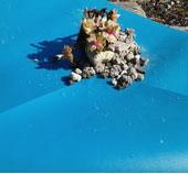 Teichfolie Blau 1 mm 1,5 mm