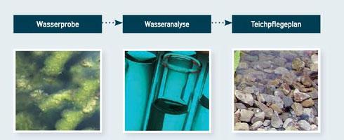 wasserpflege im teich algen entfernen aus dem teich. Black Bedroom Furniture Sets. Home Design Ideas