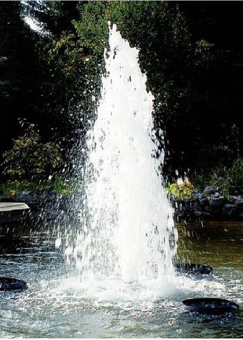 Leistungs Starke Pumpe Und Pumpen Für Schwimmteichteich